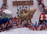 Curley RESERVED - Sphynx Kitten For Sale -