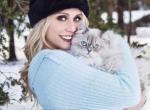 Ragamuffins home of Merlin ragdolls - Ragamuffin Kitten For Sale - Fond Du Lac, WI, US